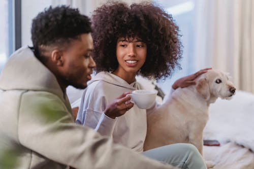 Cheerful African American girlfriend with cup of coffee listening to ethnic boyfriend near funny fluffy dog