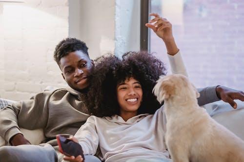 Cheerful black girlfriend playing with obedient dog near boyfriend