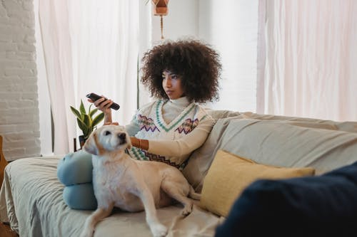 Relaxed young African American woman watching TV on sofa and caressing dog