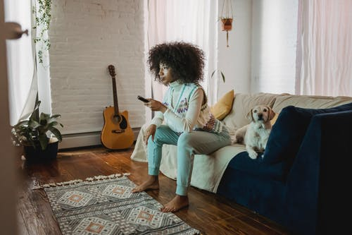 Adorable dog relaxing on sofa neat calm black female owner watching TV