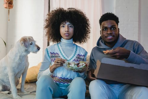 Concentrated young African American couple with curly hairs in casual outfits eating takeaway salad and pizza while watching TV sitting on sofa near cute purebred dog
