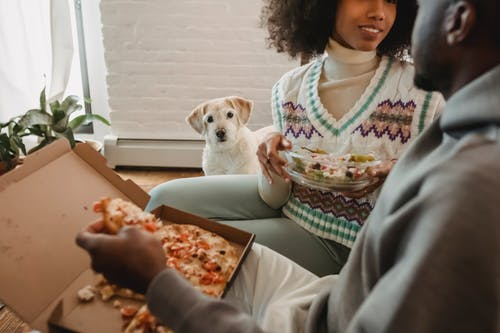 Crop anonymous happy African American couple enjoying delicious salad and pizza while funny cute dog watching