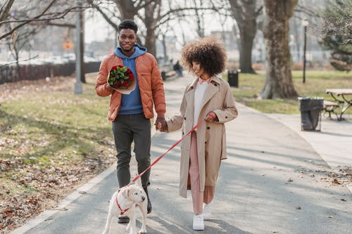 Full body of positive African American couple promenading with adorable fluffy funny dog in park