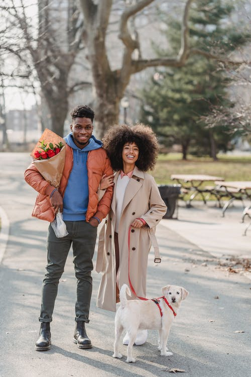 Smiling African American couple standing with puppy in park