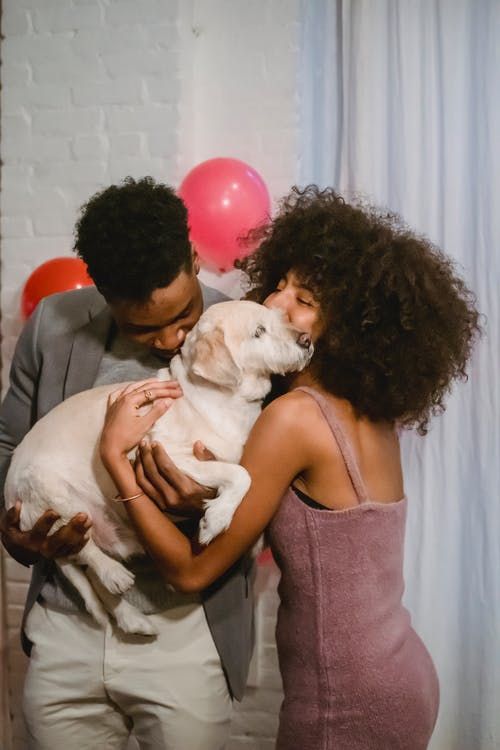 Happy African American couple holding and kissing cute dog at home on background of decorated wall at home