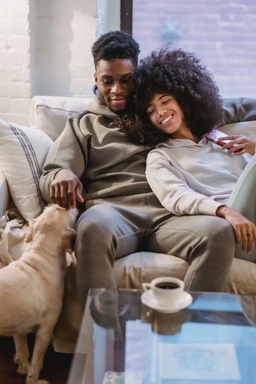 Beloved young African American guy in casual clothes embracing positive girlfriend and stroking cute dog while resting on sofa at home