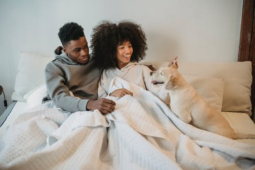 Smiling young black couple petting curious dog on bed