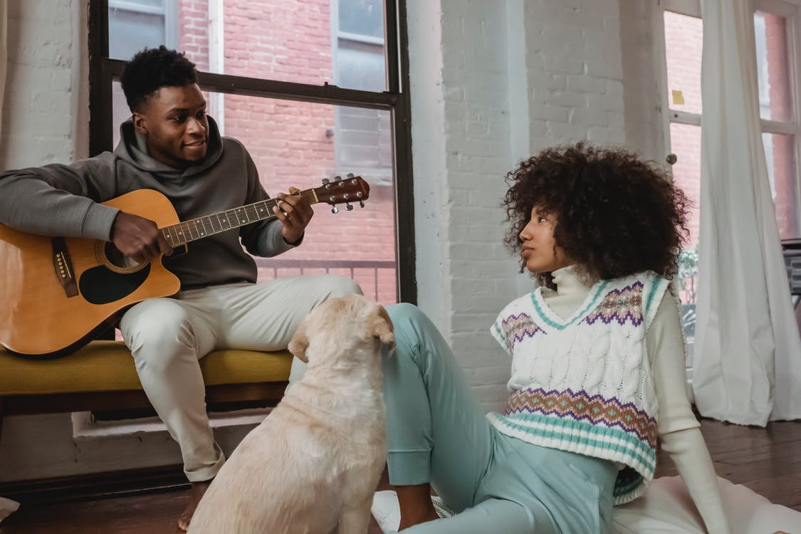 chien et guitare