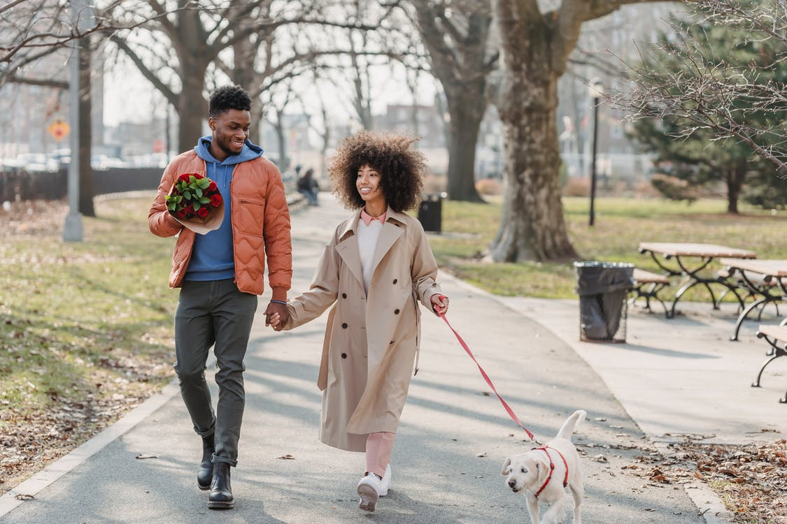 Full body of content African American couple with flowers holding hands while strolling on walkway with dog on leash during date