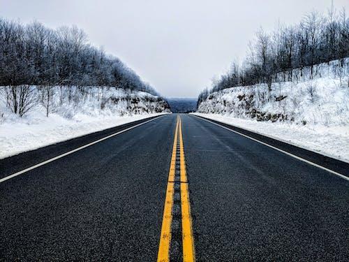 Free stock photo of asphalt, beautiful snow, beauty