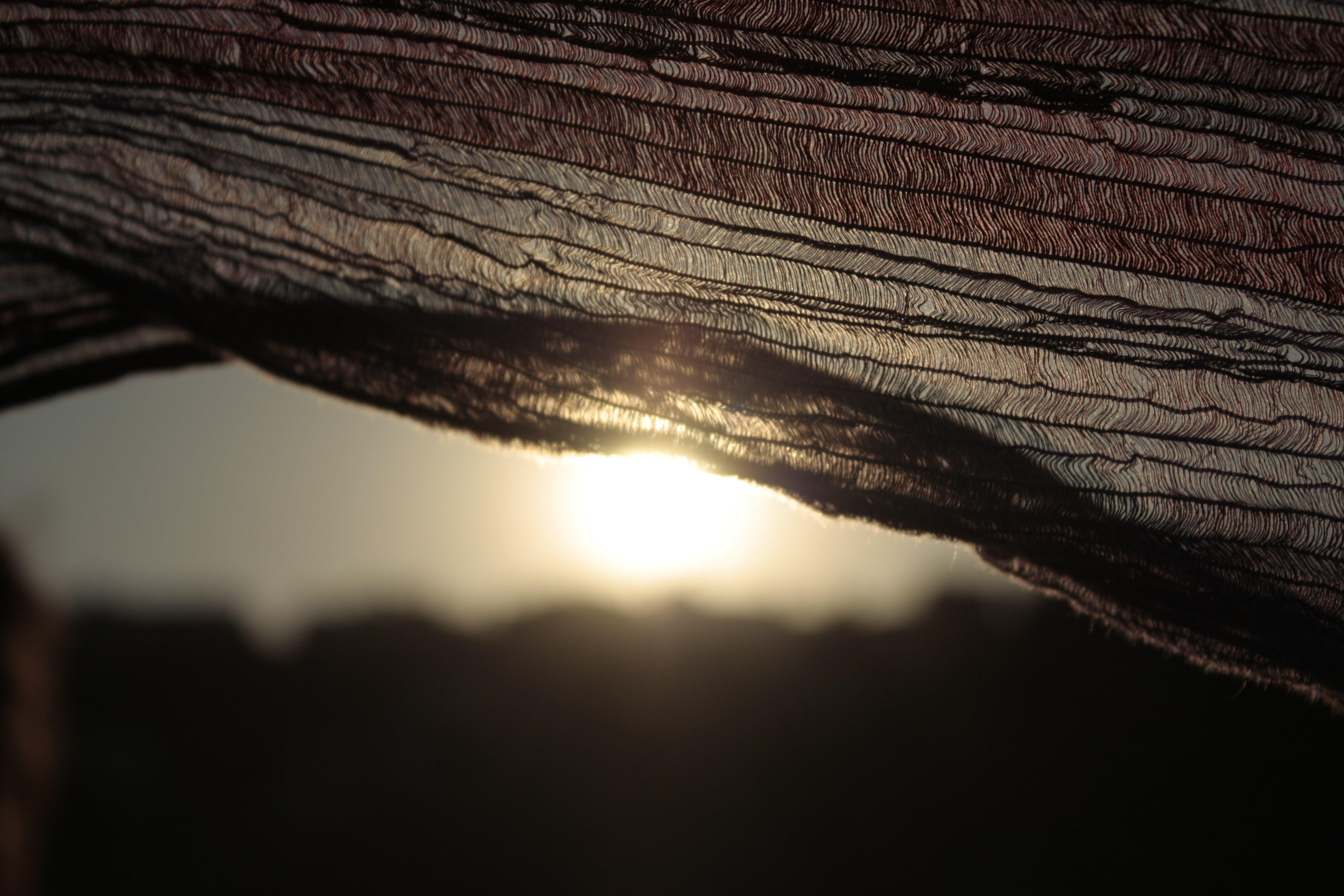 Základová fotografie zdarma na téma moře, slunce, sluneční záře