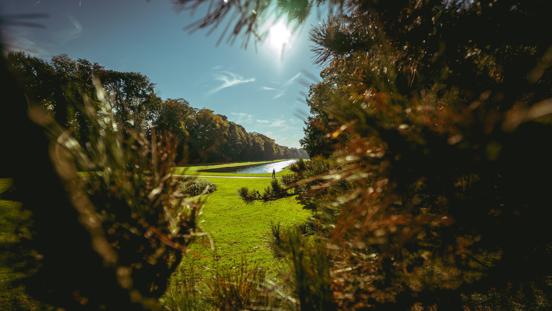 Δωρεάν στοκ φωτογραφιών με ακτίνες ηλίου, γαλάζιος ουρανός, γρασίδι, γραφικός
