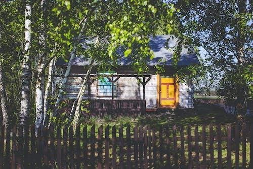 Fotobanka sbezplatnými fotkami na tému dedina, drevený, opustený, príroda