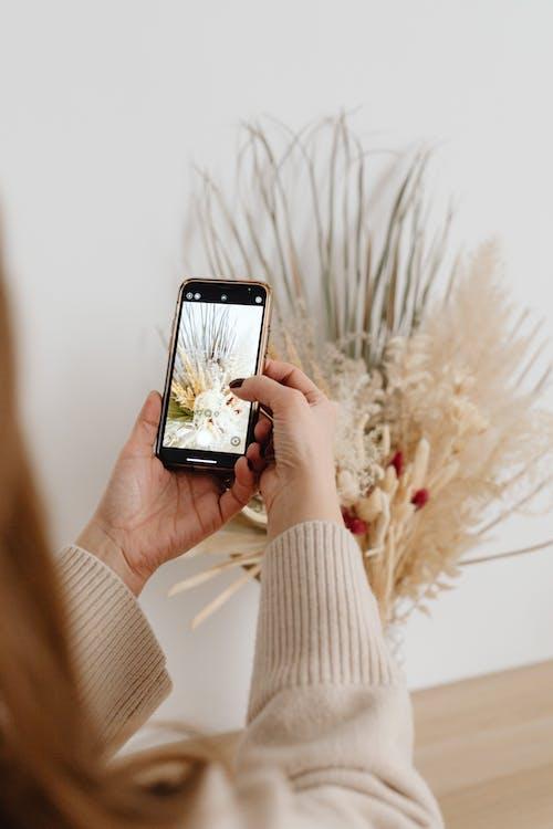 Fotobanka sbezplatnými fotkami na tému bezdrôtový, dotyk, hobby, internet