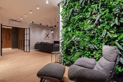 Interior of light modern flat with armchair with pouf near green wall with plants leaves