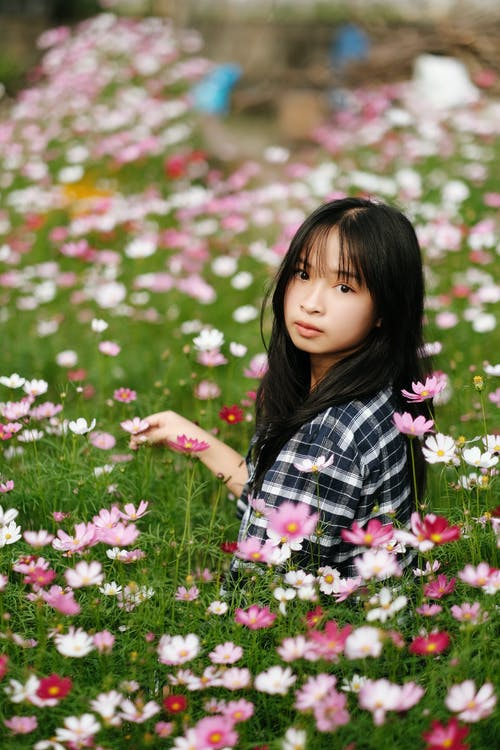 Side view of Asian girl in checkered shirt sitting in meadow with blooming cosmos flowers and looking at camera