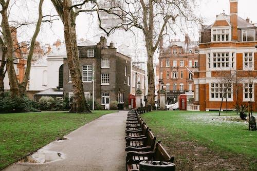 伦敦市中心, 倫敦, 光秃秃的 的 免费素材图片
