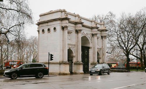 交通系統, 倫敦, 光秃秃的树木 的 免费素材图片