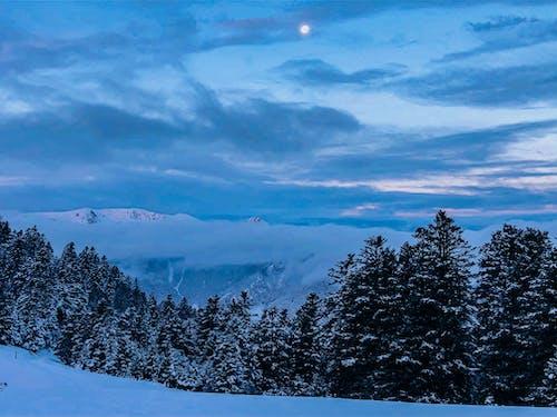 Kostenloses Stock Foto zu bäume, berg, blau