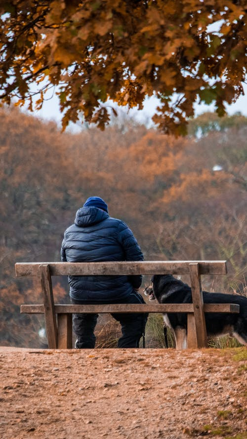Person in Blue Jacket Sitting on Brown Wooden Bench