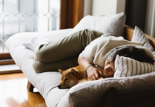 Woman in Knit Shirt Lying on Bed beside a Brown Dog