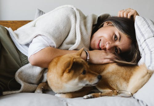 Happy young woman caressing purebred dog lying on sofa