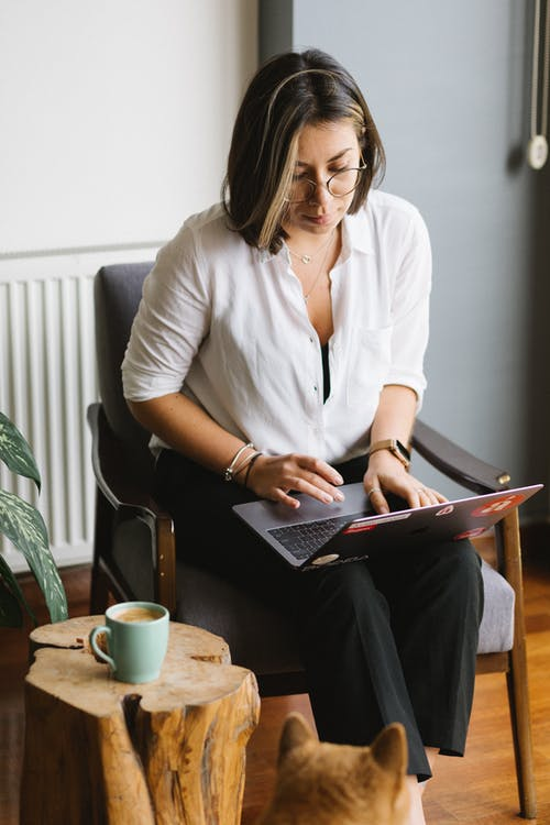 Concentrated woman browsing laptop in living room near dog