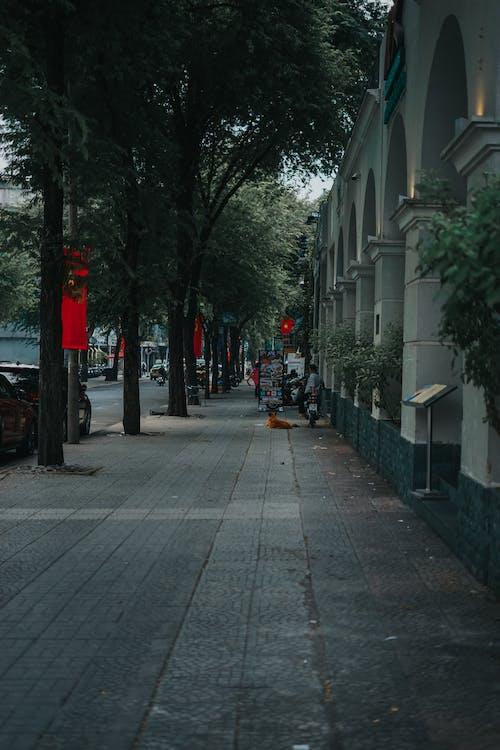 サイゴン, ベトナム, 人の無料の写真素材