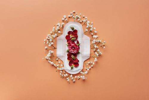 Gratis stockfoto met bloemen, bovenaanzicht, flatlay