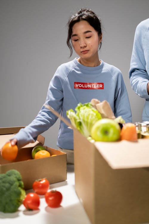 Free stock photo of aid, altruism, apple