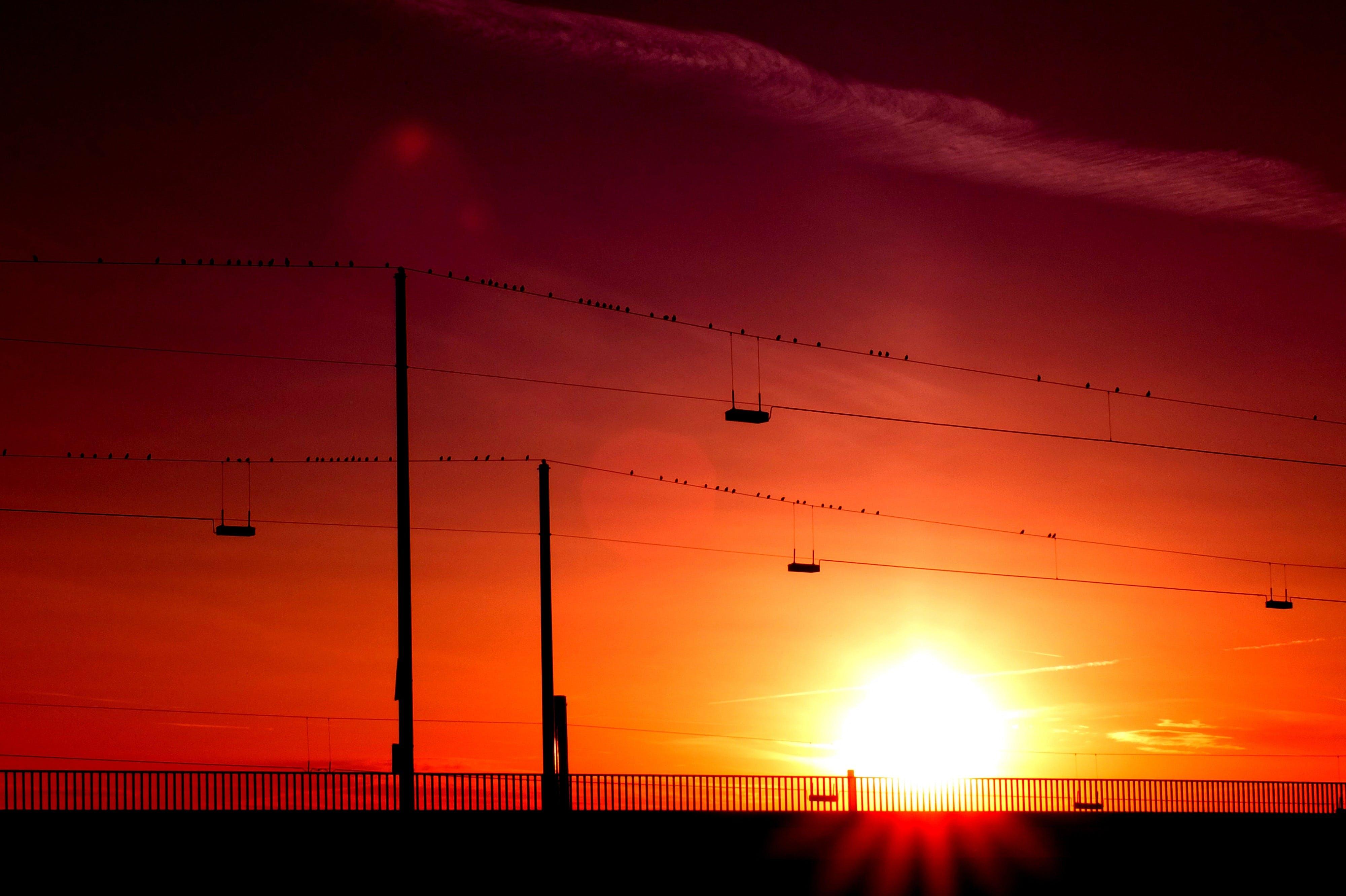 Silhouette of Posts Under Orange Sunset
