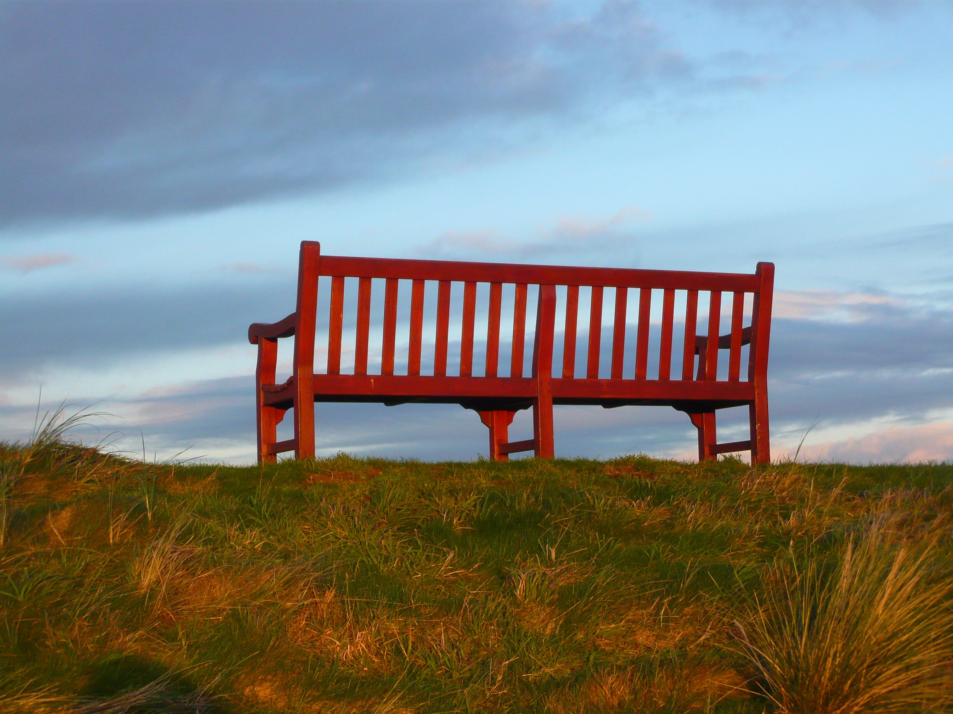 Brown Wooden Bench on Green Grass Field