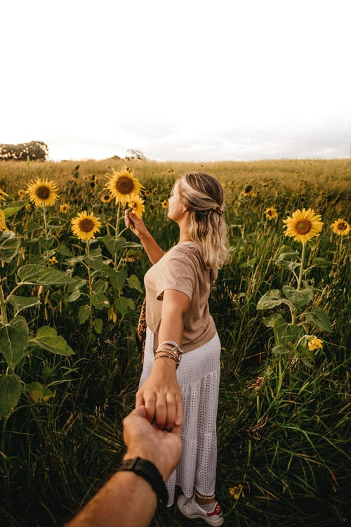 Faceless woman standing on sunflower field and holding boyfriends hand