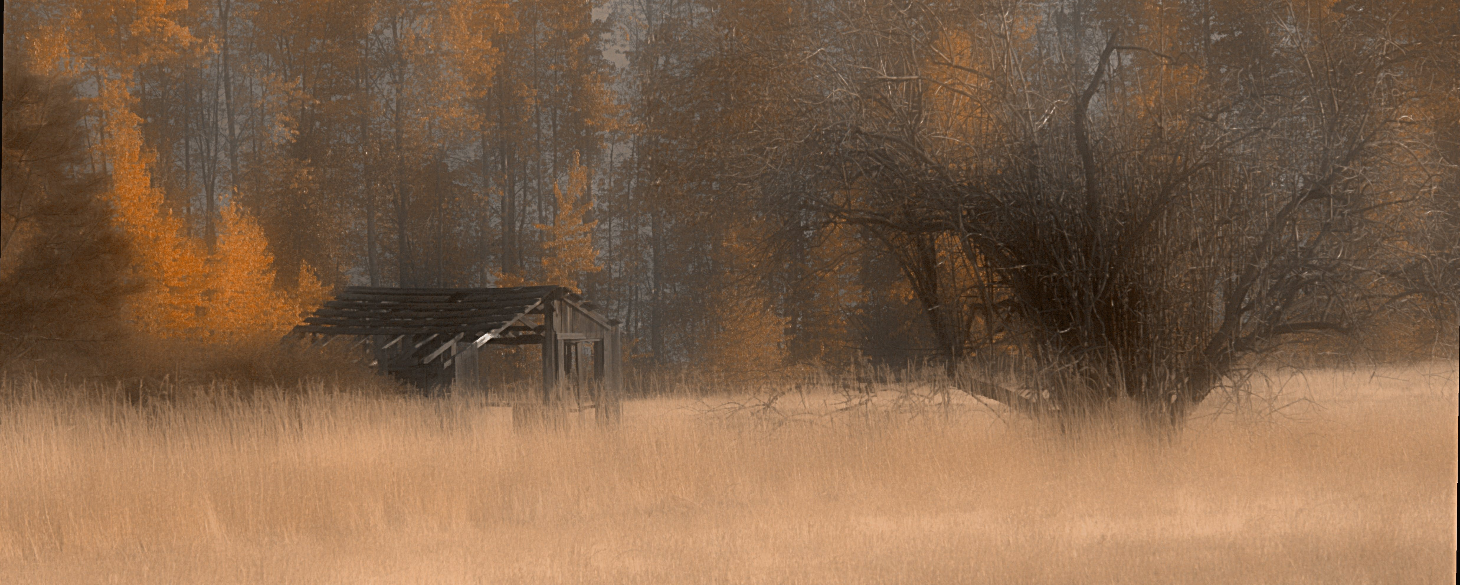 Free stock photo of Fall in British Columbia Canada... shed in autumn