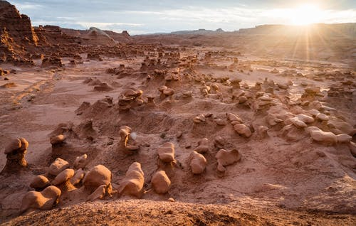Free stock photo of arid, ball-shaped, desert