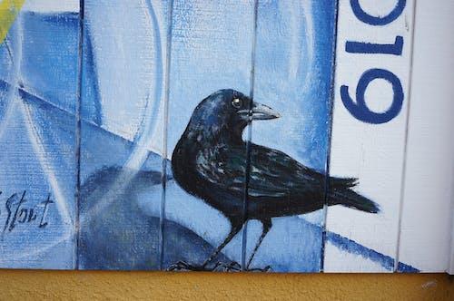 Immagine gratuita di azzurro, blu, dipingendo