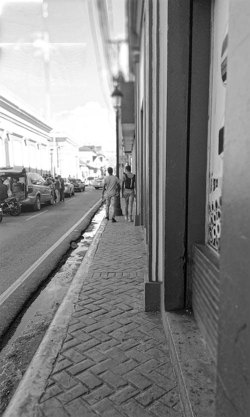 Free stock photo of urban