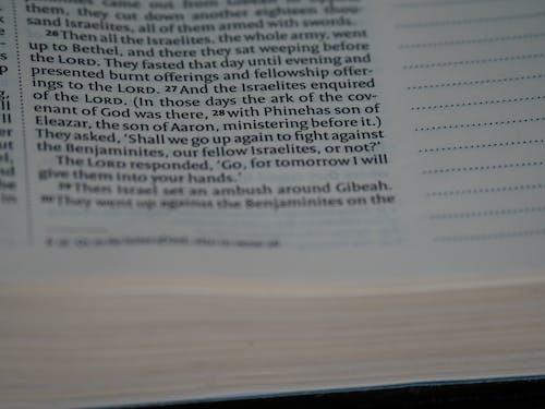 Безкоштовне стокове фото на тему «Canon, niv, sefer shoftim, біблійне дослідження»