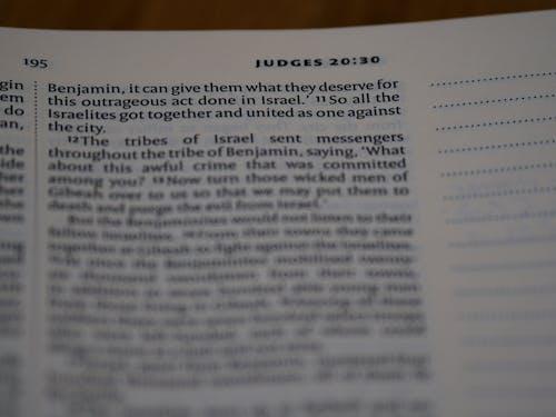 Gratis arkivbilde med andakter, bibel, bibelstudie, bokeh