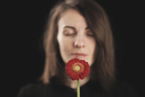 Бесплатное стоковое фото с в помещении, валентина фон, валентинка, валентинов день