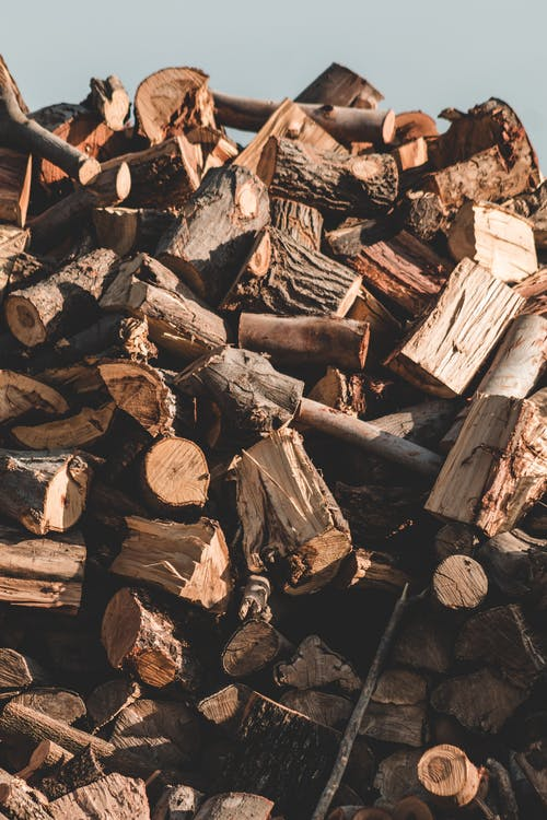 Free stock photo of batch, broken, chopped wood