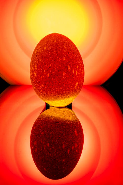Bright orange stamen before yellow red gradient
