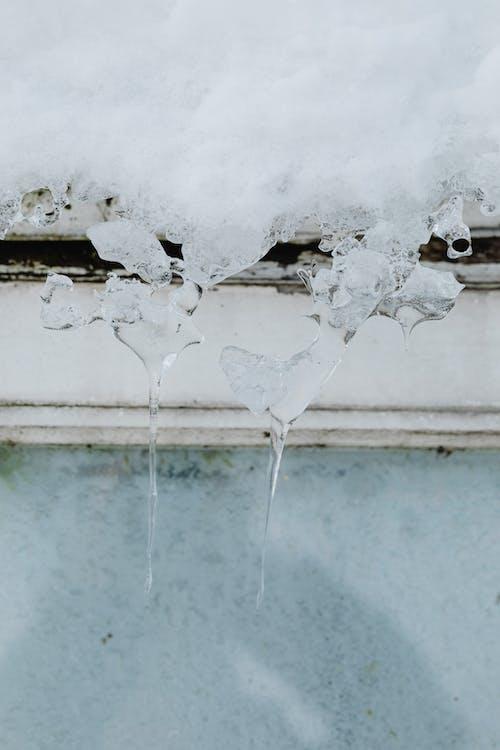Imagine de stoc gratuită din congelat, deosebit, frig, gheață
