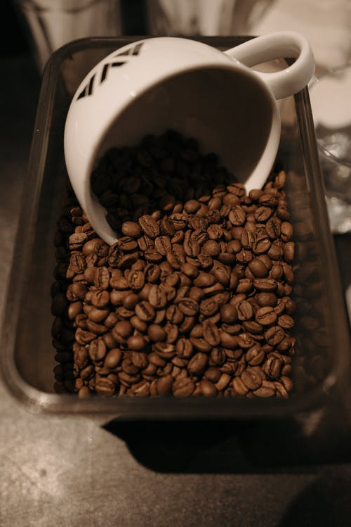 Brown Coffee Beans on Stainless Steel Tray