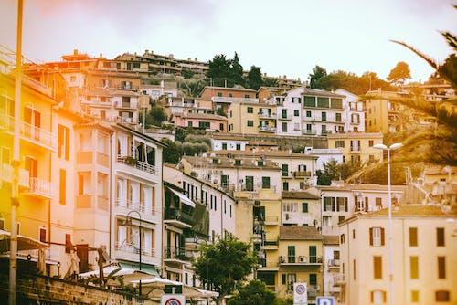 山丘, 房子, 村莊 的 免费素材照片