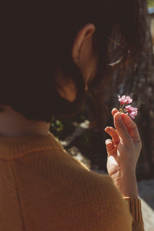 女孩, 手, 櫻花 的 免費圖庫相片