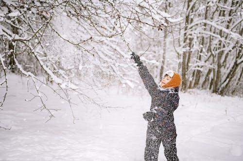 감기, 겨울, 겨울 옷의 무료 스톡 사진