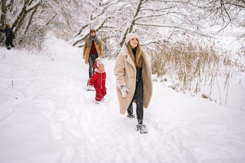 Foto d'estoc gratuïta de a l'aire lliure, caminant, congelant