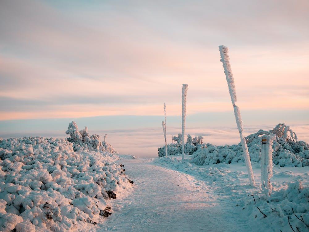 Darmowe zdjęcie z galerii z deska snowboardowa, góry, jeździć na nartach