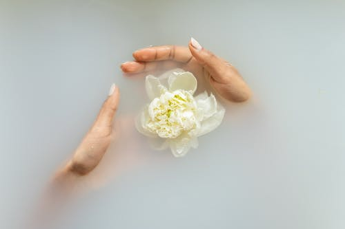 Unrecognizable female with manicured hands holding white flower in hands in soapy water during spa procedures